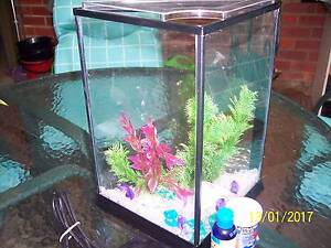 Fish Tank with Accessories and Heater Pooraka Salisbury Area Preview