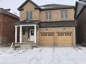 Beautiful Queensville Home For Rent!