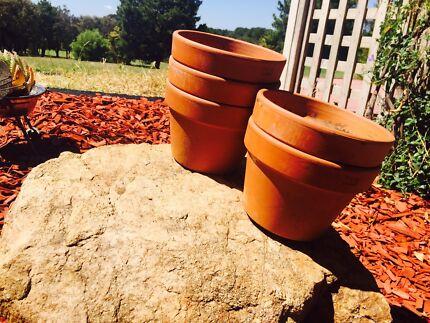 Garden Pots Canberra Plant stand pots garden beds gumtree australia south canberra mini terra cotta pots x 6 workwithnaturefo