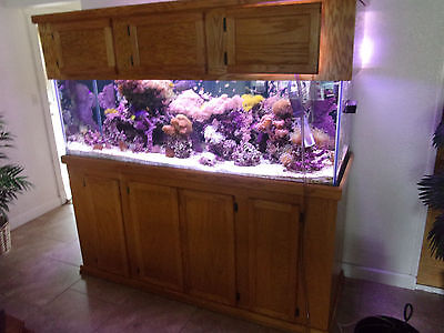 PLANS TO BUILD Your Own STAND For a 29, 55, 75, 90, or 135 gallon FISH TANK