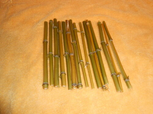 20- Miniature Bamboo Logs  Dollhouse  HO Scale Tiki Hut Craft