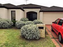 **PRICE REDUCED FOR QUICK RENTAL** 4x2x2 Modern Home Bertram Bertram Kwinana Area Preview