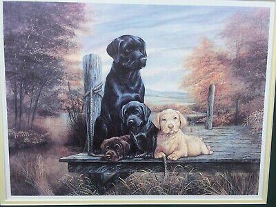 Wonderful Vintage Print Black Labrador Retriever Dog Chocolate Yellow (Chocolate Labrador Retriever Puppies)