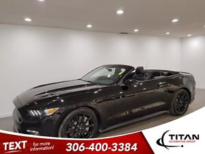 2016 Ford Mustang GT|V8|Convertible|CAM|Leather|Htd Seats