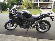 2011 CBR250R - FRESH REGO, LAMS APPROVED Ormeau Gold Coast North Preview