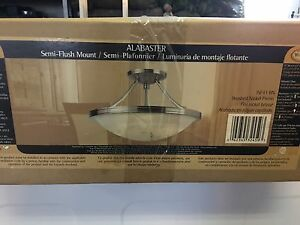 New semi flush mount light