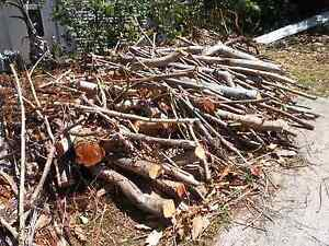 Free firewood Buderim Maroochydore Area Preview