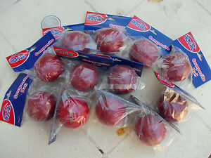 COMPOSITE-BALLS-Aerial-brand-bulk-lot-12-1-dozen-FREE-POST