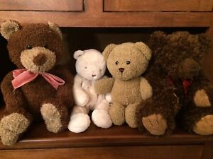 Teddy Bear Stuffed Animals & Extras