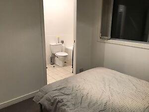 A nice room to rent at Varsity Lakes Varsity Lakes Gold Coast South Preview