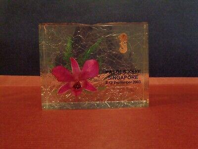 Singapore Office Acrylic Desk Orchid Decoration W Presentation Box