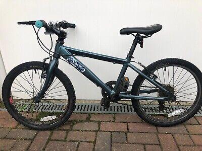 """Raleigh ZERO Boys Mountain Bike 20"""" wheels 11"""" frame"""