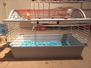 Rabbit/Guinea Pig Cage & Accessories