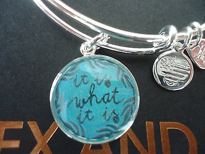 Alex And Ani It Is What It Is Ii Shiny Silver Charm Bangle New W Tag Card   Box