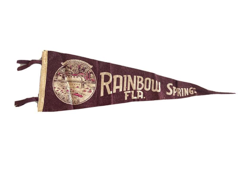 RARE Vintage RAINBOW SPRINGS FLA Felt Flag Pennant Souvenier Aesthetic