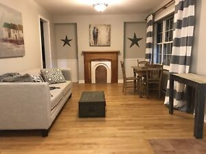 Upscale urban downtown one bedroom apartment