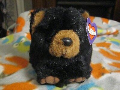 BENNY THE BLACK BEAR PLUSH BEANIE PUFFKINS NWT