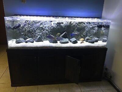 complete truvu  aquarium setup