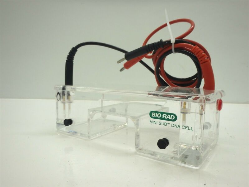 Bio-Rad Mini Sub DNA Cell Gel Electrophoresis