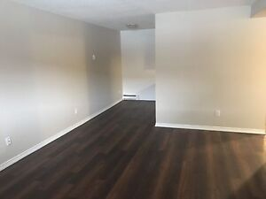 Gorgeous 2 Bedroom Apartment - Storage Available!