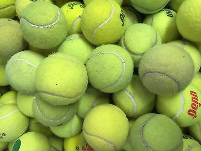 100 Used Tennis Balls - Free Ground Shipping - Dog Toys