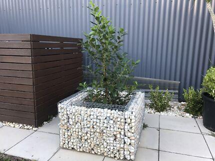 Gabien Cage Planters
