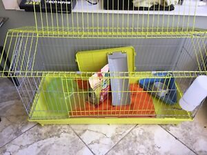 Bunny cage set up