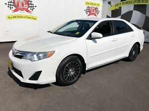 2014 Toyota Camry LE, Automatic, Back Up Camera, Bluetooth