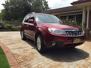 Subaru Forester 2012 XS Premium - Low Kms + Immaculate Condtion Hornsby Hornsby Area Preview