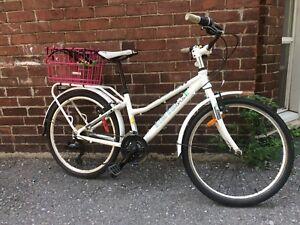 Opus Rambler  bike  $200 obo