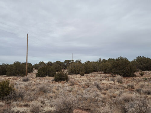 1.18 acre lot in Snowflake, AZ (Navajo County) - Cash or finance