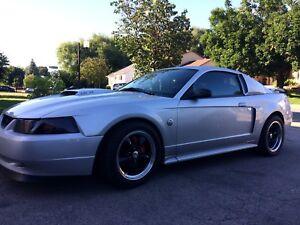 Mustang gt 2004