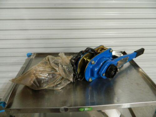 Lever Chain Hoist 6000 lb capacity 10