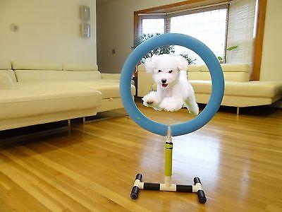 Dog Agility Training Hoop Jump Indoor Outdoor Pet Show Equipment. Luxury.
