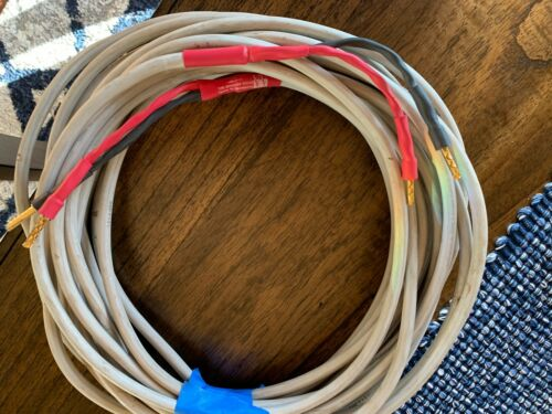 AudioQuest Type 4 Speaker Wire 35 feet long.