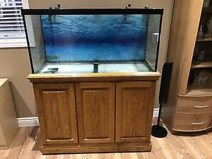 90g fish tank with stand