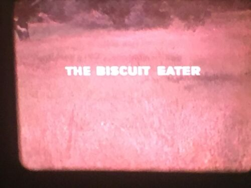 """16mm sound/color feature film -- """"Biscuit Eater"""" (Disney, 1972)"""