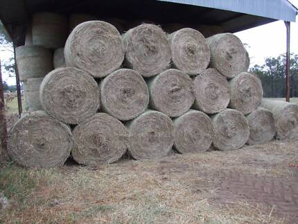 ROUND BALES MEADOW HAY premium horse quality Camden Camden Area Preview