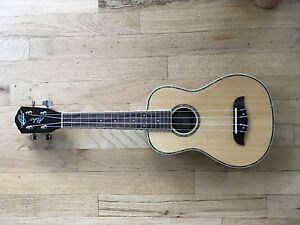 GREAT CONDITION CONCERT UKULELE AND HARD EXTERIOR CASE