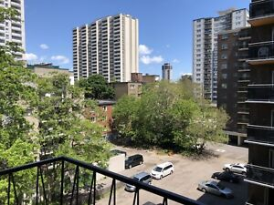 Male Roommate Wanted Donwtown Hamilton