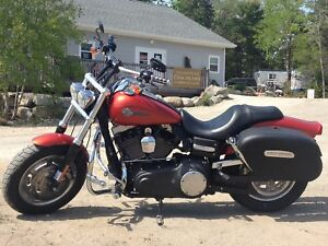 Looking For Fat Bob Seat