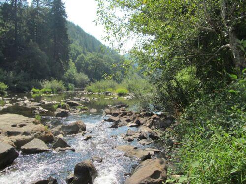 Smith River Oregon Gold Mining Claim Placer Mine Creek Panning Sluice Nugget Au