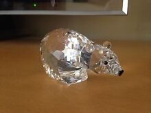 **SWAROVSKI - 'Polar Bear'** Leichhardt Leichhardt Area Preview