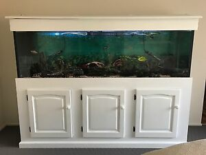 URGENT!!  Complete fish tank, aquarium. Moss Vale Bowral Area Preview
