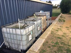 IBC container set up Aquaponics system Cardup Serpentine Area Preview