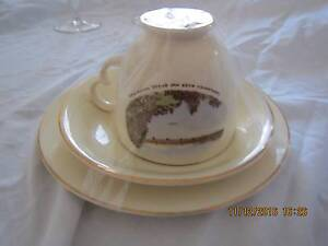 Vintage Cup and Sauce set - Shoalhaven Waratah Newcastle Area Preview