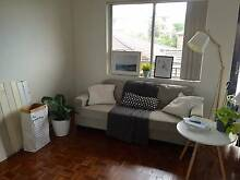 Unfurnished room for rent in friendly flat - Close to UNSW Kingsford Eastern Suburbs Preview