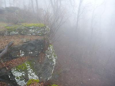 CJ's Ozark Mist