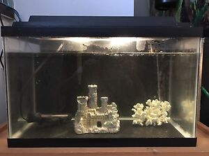 10 gallons fish tank and accessories.
