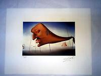 Salvador Dali Litografía 50 X 65 Bfk Rives Sello Un Seco Firmada A Lápiz D033 -  - ebay.es